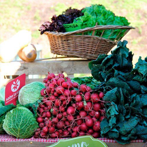 Bolsón de verduras y verduras agroecológicas
