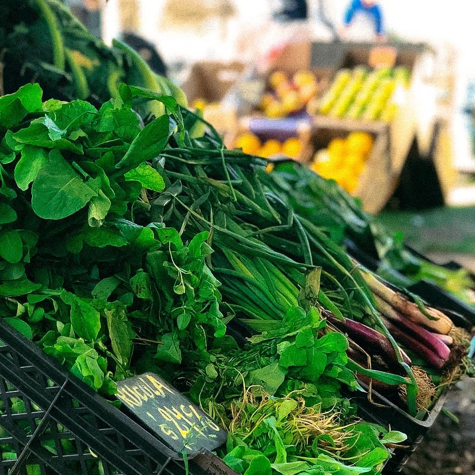 Bolsón de verduras agroecológicas 5 kg