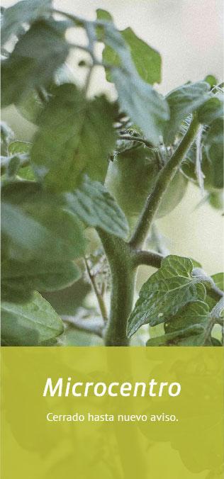 Mercado productos org´ánicos Microcentro CABA Buenos Aires Tienda Online productos naturales, saludables y sin agrotóxicos