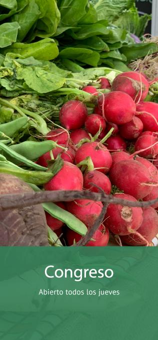Mercado productos org´ánicos Congreso Buenos Aires Tienda Online productos naturales, saludables y sin agrotóxicos