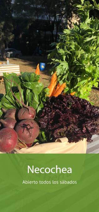 Mercado productos org´ánicos Necochea Buenos Aires Tienda Online productos naturales, saludables y sin agrotóxicos