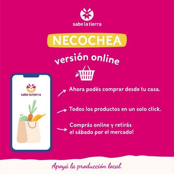 version online Sabe la Tierra Necochea